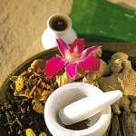 Ayurveda and Holistic Treatment